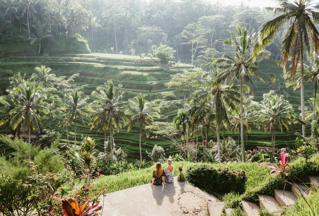 More than 3 million tourists come to Ubud, Bali every year.