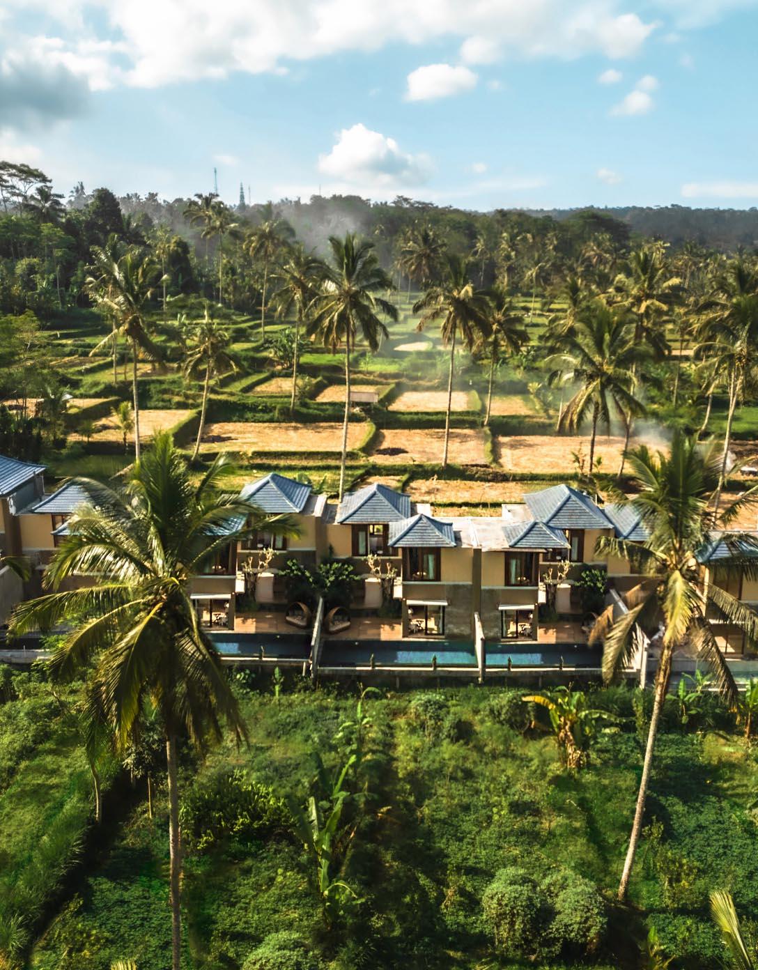 top best resort in ubud nature